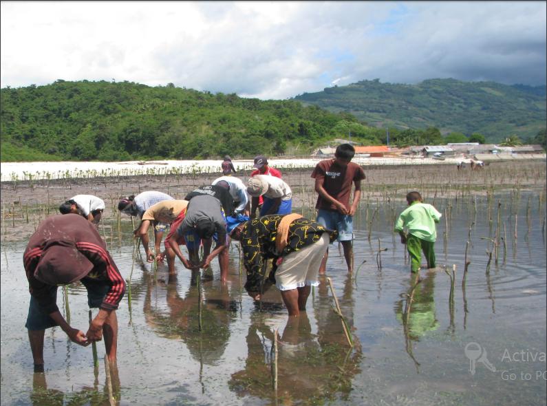 Climate change, Adaptation, Mitigation, Forests, FLR