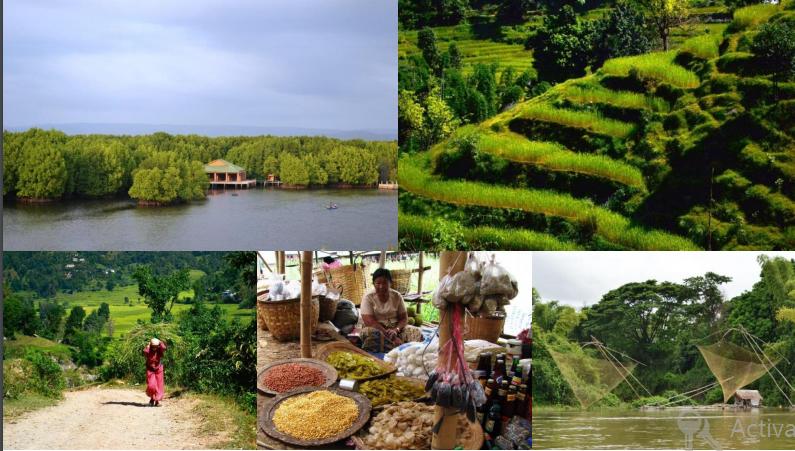 Climate change, EbA, Ecosystems based Adaptation, Economics