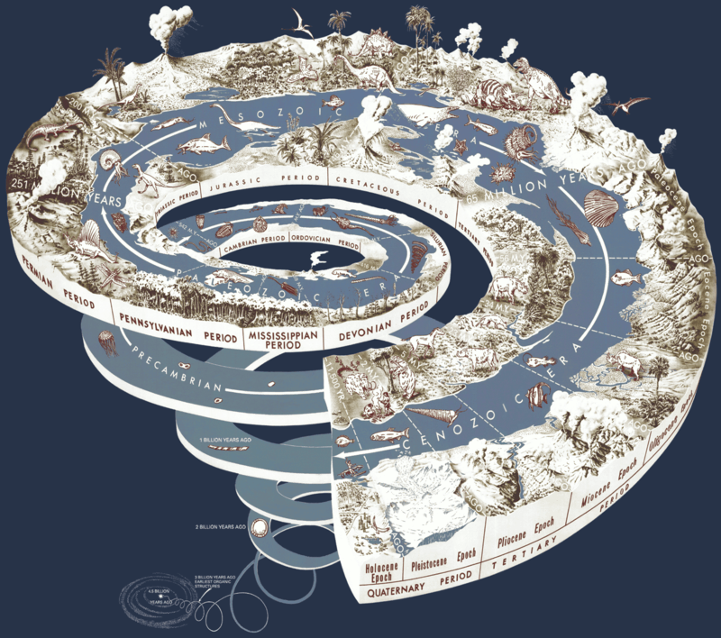 History of Life on Earth Geological time spiral by USGS
